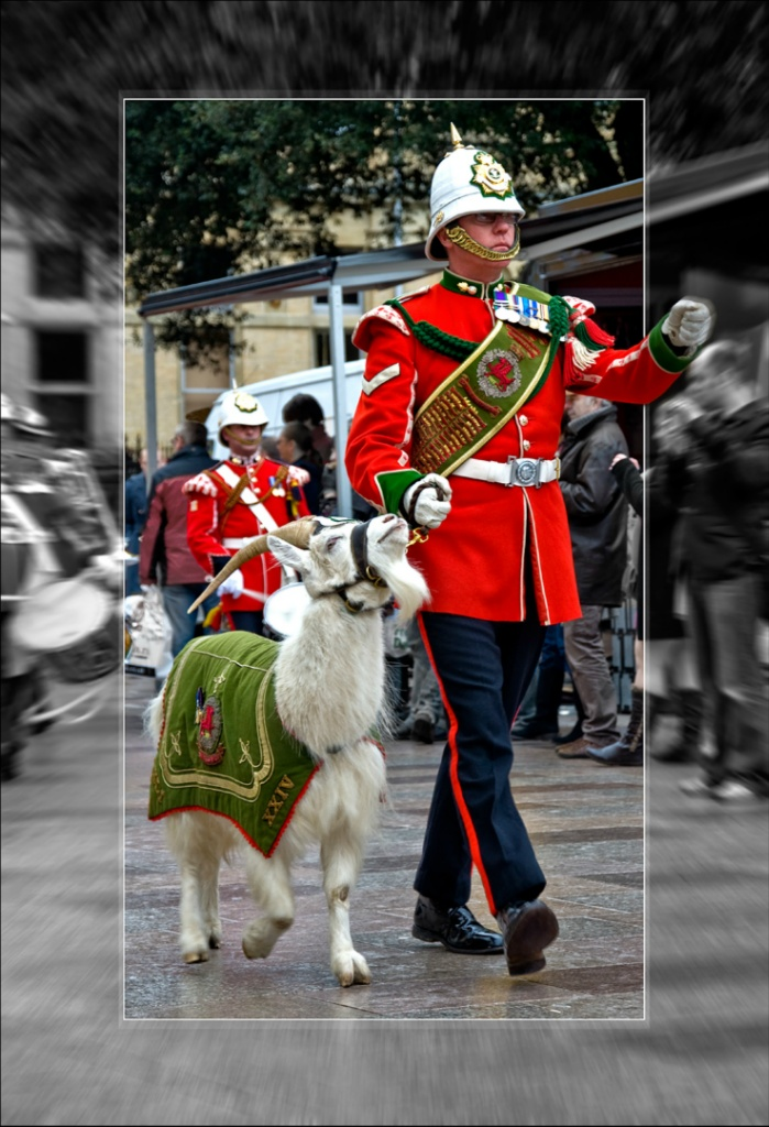 16 St David\'s Day Parade